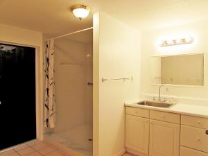 3rd Bathroom (in-law suite)